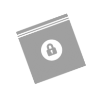 Security Bags Icon
